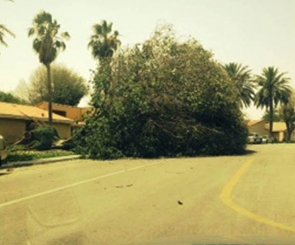 Big Wind Storm in Dhahran Wednesday Night April 30, 2014