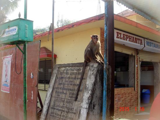 Visit to India via Wahga Border - 48