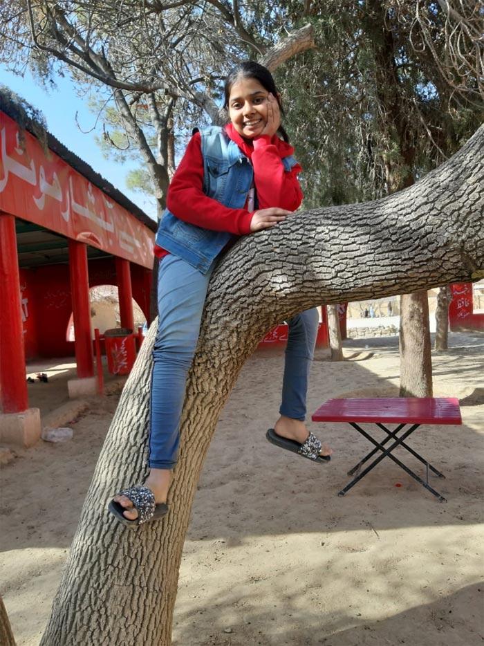 Zara relaxing on a tree branch.