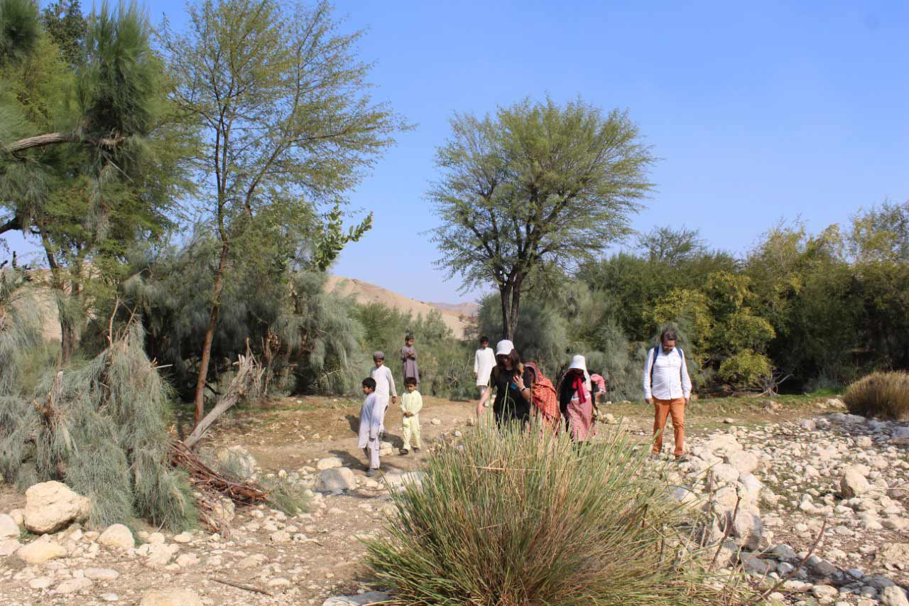 All the members are walking towards the fresh water stream, Pariyon Jo Tar, passing through the cultivated area done by the locals.