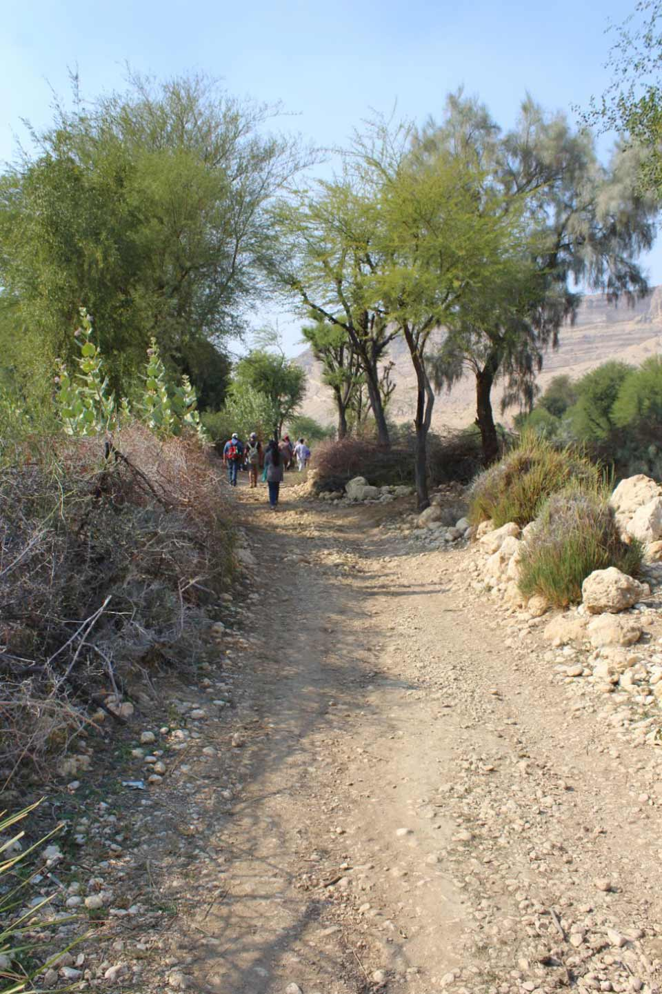 "Another view of the trekking path to ""Pariyon Jo Tar"""