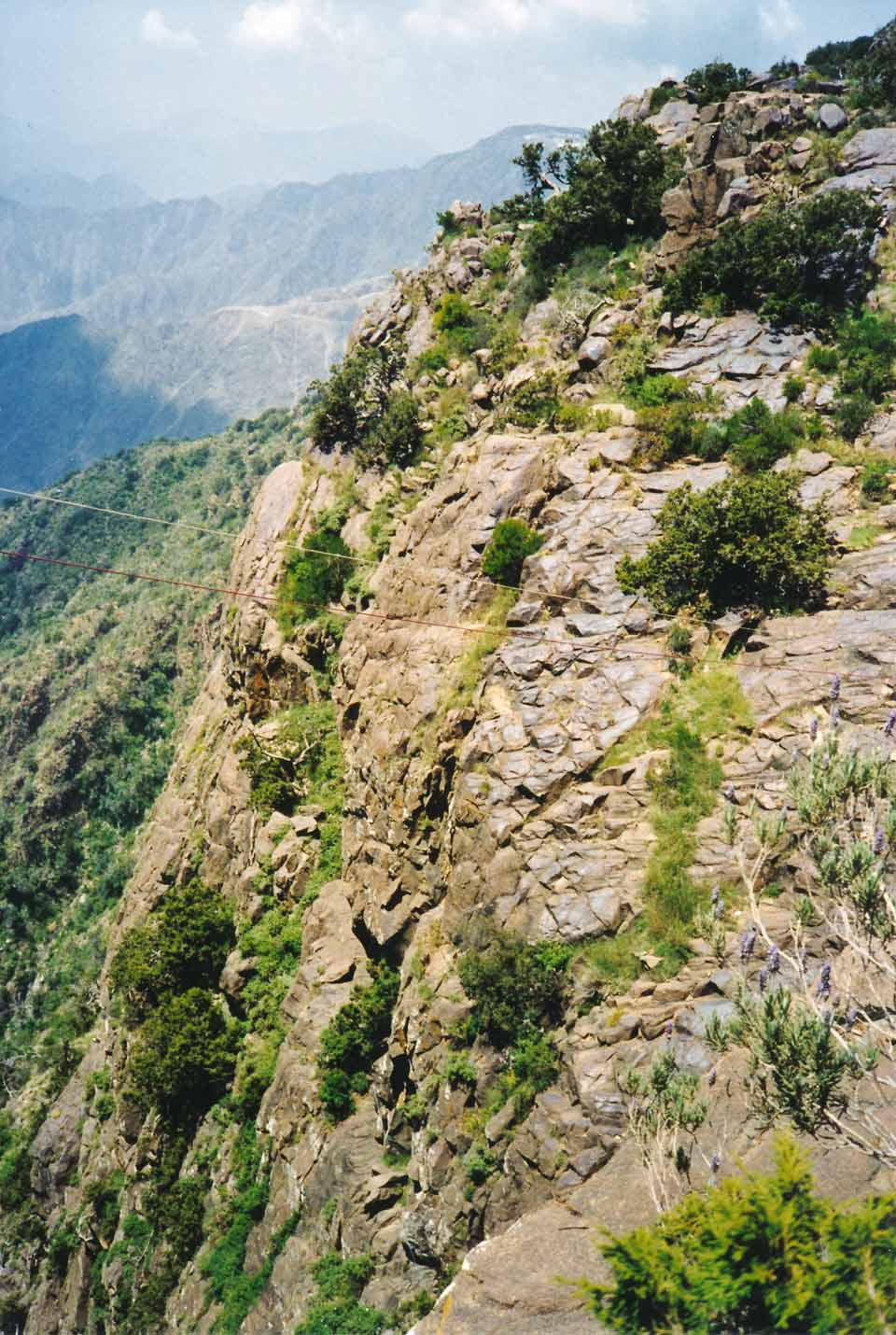 Zip Line Across Canyon