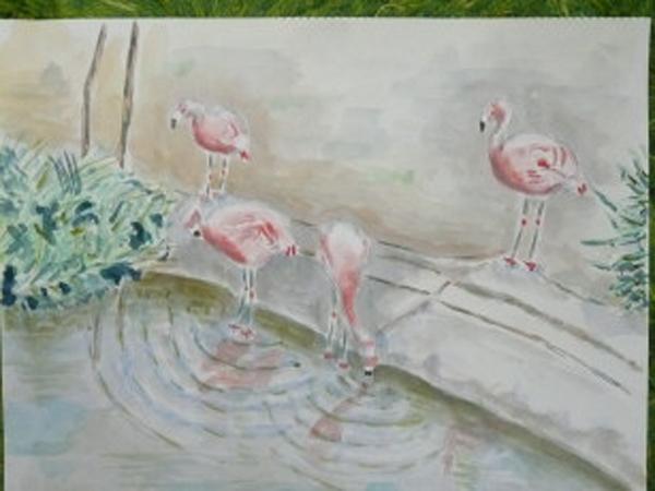 The elegant flamingo.