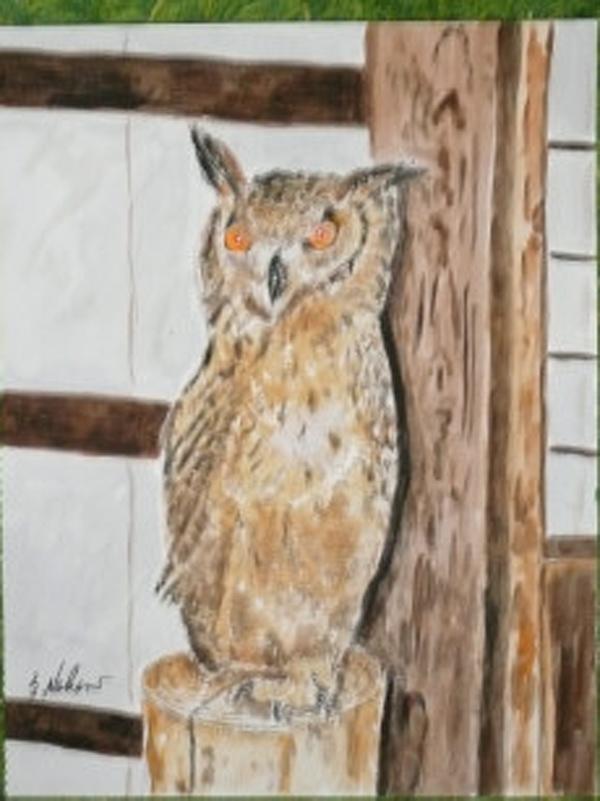 The owl in Mizusawa, Yamanashi prefecture.