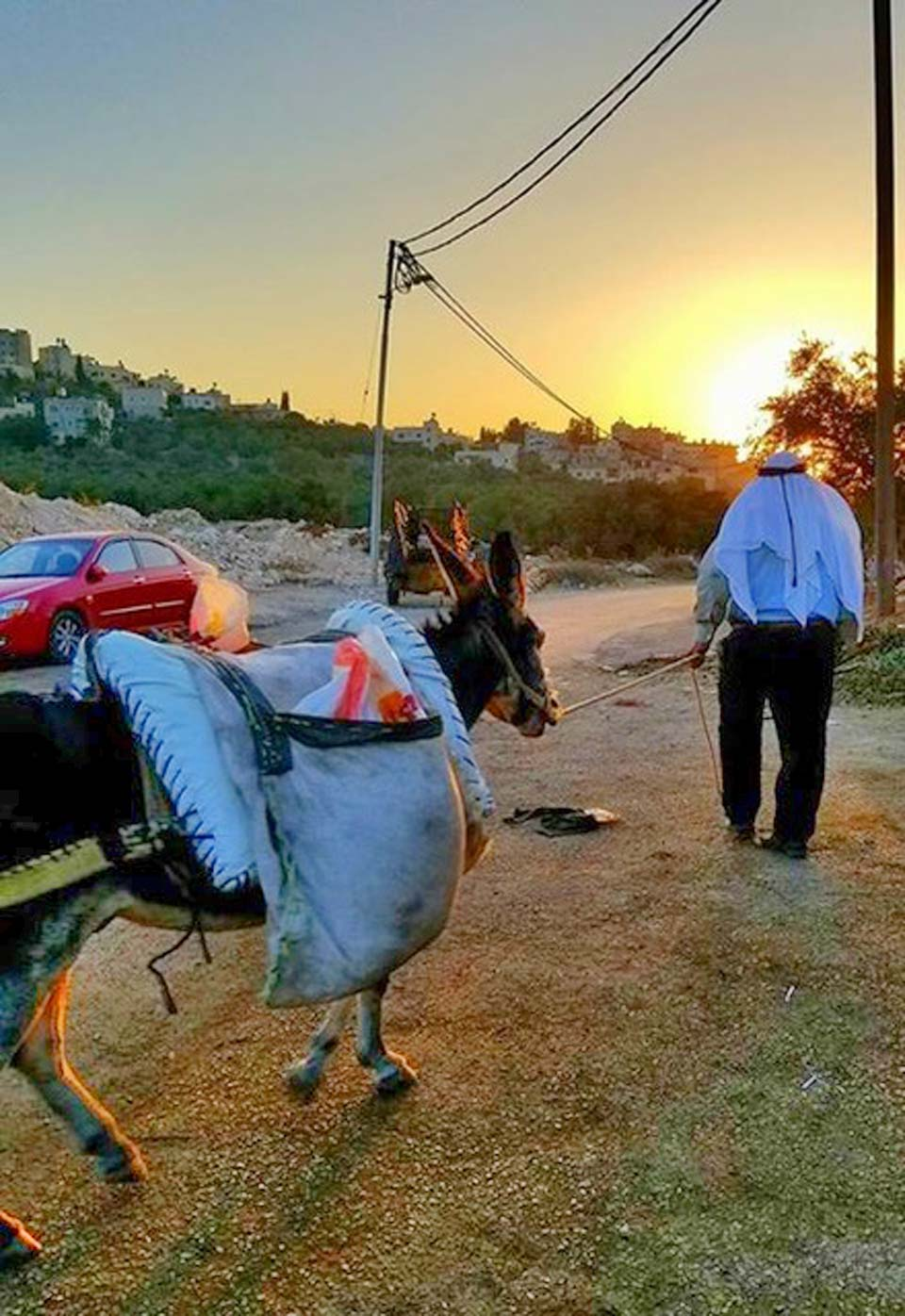 Sunset at the olive press in Asira al-Shimaliyah. People brought their olives by donkey, car, or truck.