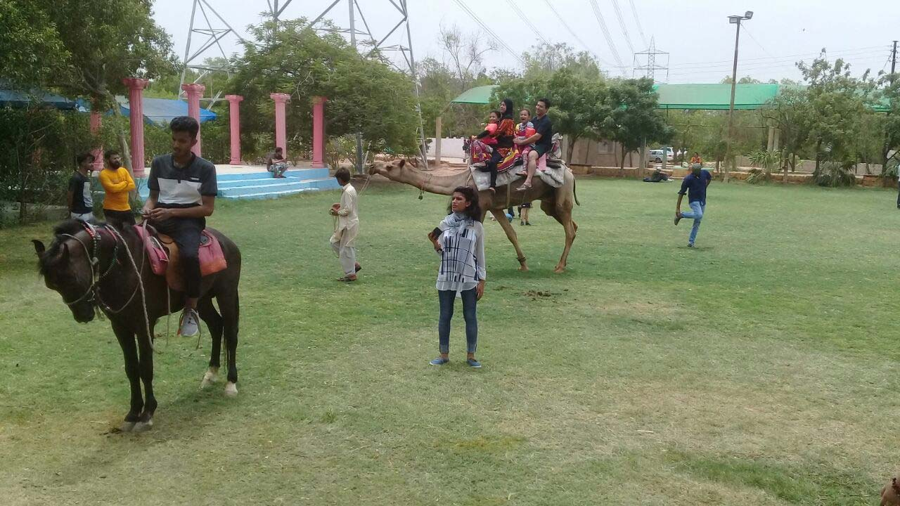 Imran and family are enjoying the camel ride and the horse ride at the farm house