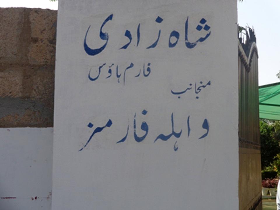 Shahzadi Farm House