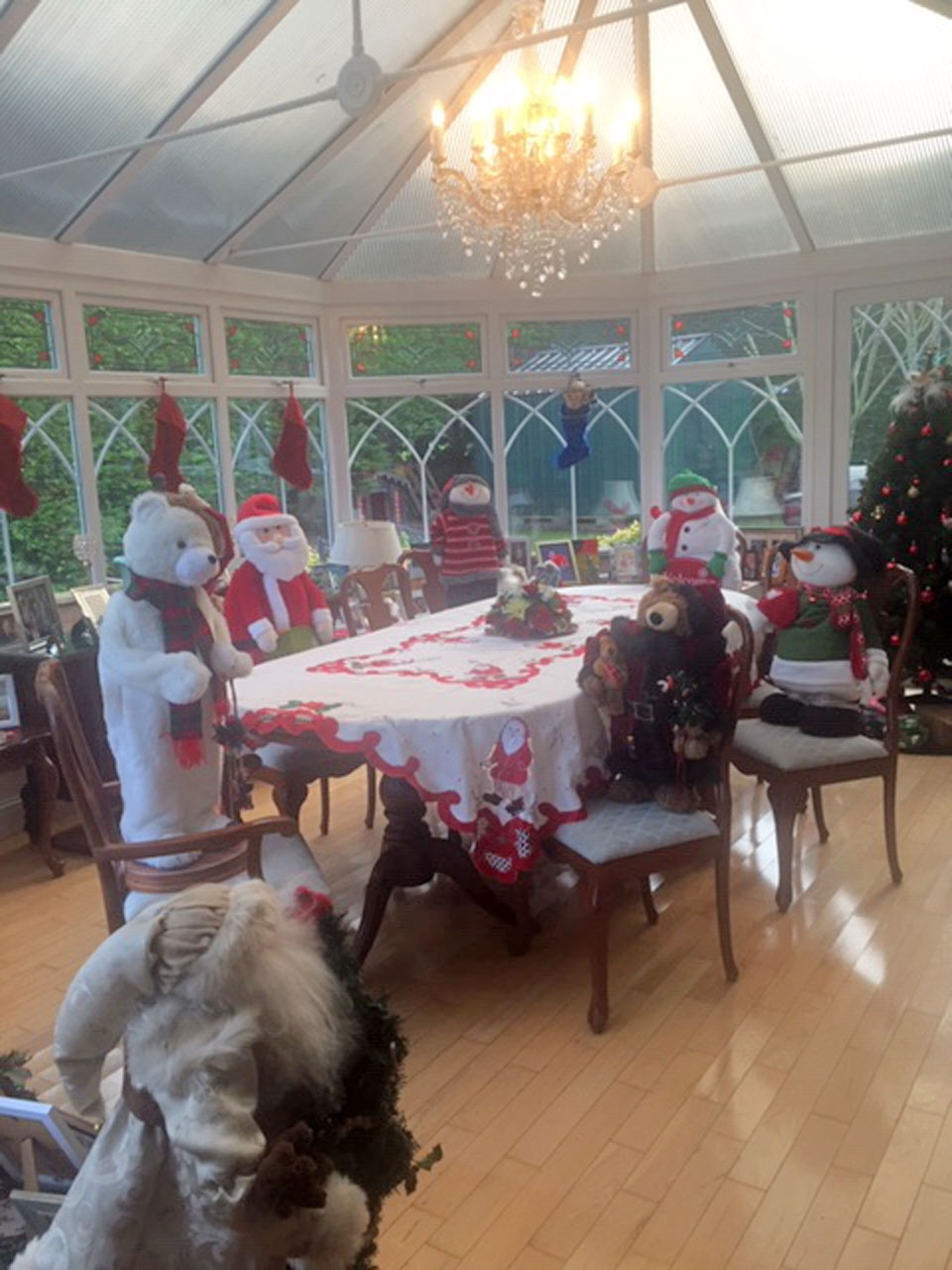 """Tom and Patricia Noland's dinner guests and celebrations over the holiday. """"Keeping safe. The problem was they didn't leave until after the New Year."""""""