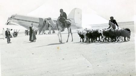 TAP Line Milk Run Circa 1953