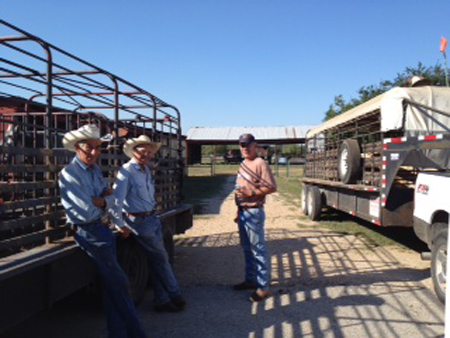 Cowpokes Day
