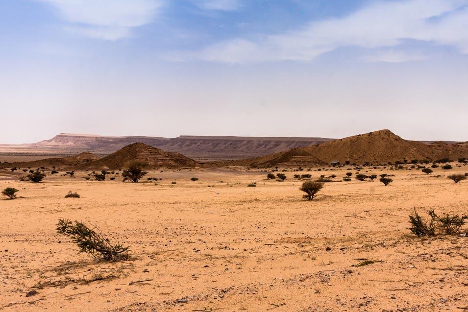 Journey to the Hejaz