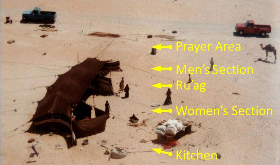 Tales of the Bedouin - Part VII: A Mother's Journey Part 2