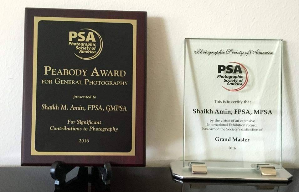 Shaikh Amin Receives 2 Prestigious Awards in PSA Conference