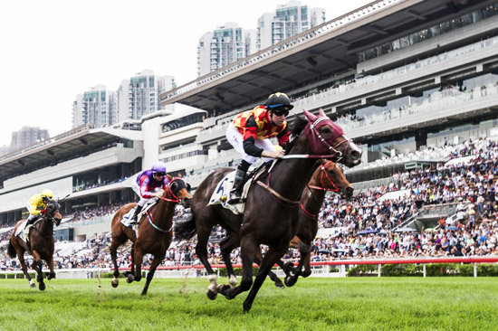 Horses galloping to the finish line at Sha Tin Racecourse