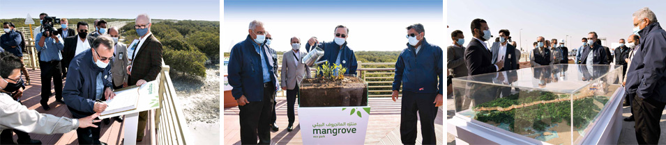 More than Just a Pretty Place: Aramco's New Mangrove Eco-Park a Natural Wonder