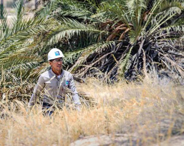 Pioneering Plant on Environmental Frontline