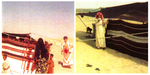Bedouin women with two children and Colleen