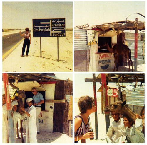 Small Arab village and baby camel at a Pepsi stand