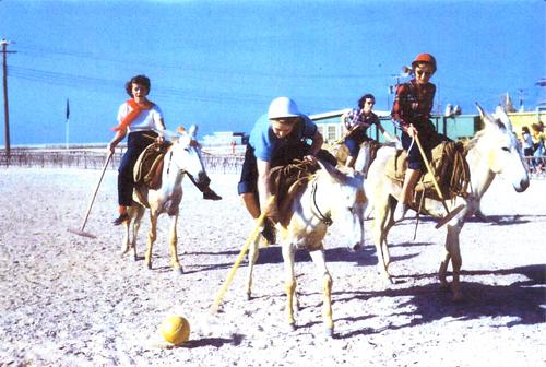 Aramco Sponsored Donkey Polo