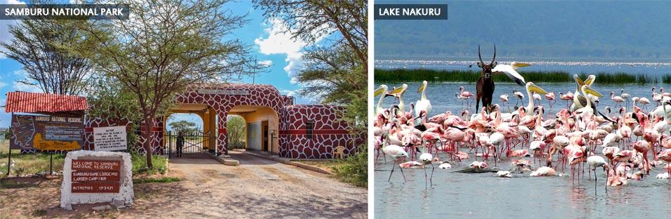 Aramco ExPats Travel Club   Kenya Safari