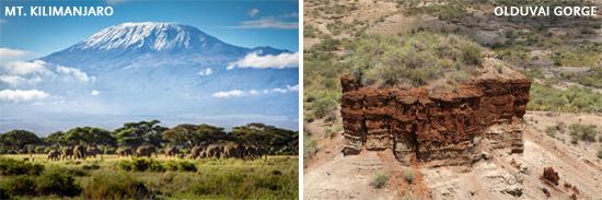 Aramco ExPats Travel Club | Tanzania Safari